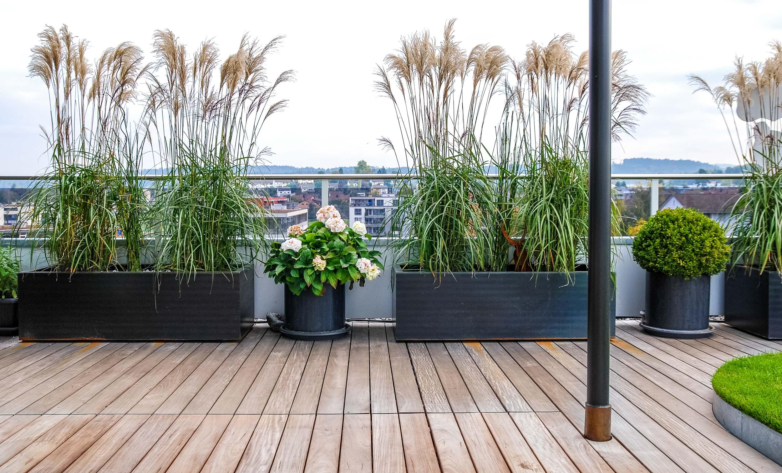 Gestaltung Dachterrasse Auf Gewerbehaus Uster Schindler